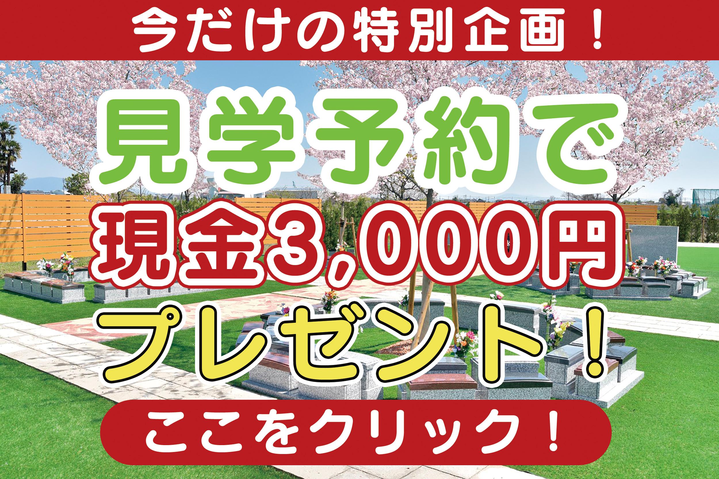 現金3000円プレゼント